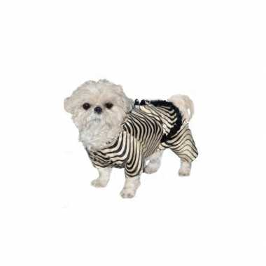 Honden zebra verkleedkleding